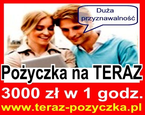 pożyczki w 15 minut online