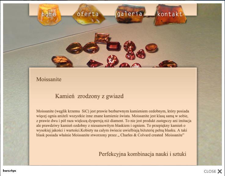 Panorama Internetu Sp z oo,profesjonalne strony www